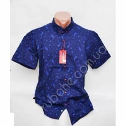 Рубашка мужская норма (M-XXL)-33861