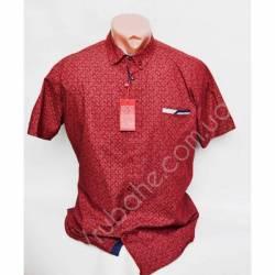 Рубашка мужская норма (M-XXL)-33864