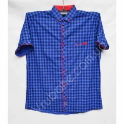 Рубашка мужская норма (M-3XL)-33880