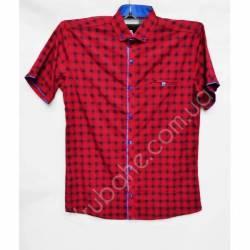 Рубашка мужская норма (M-3XL)-33881