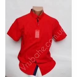 Рубашка мужская норма (M-3XL)-33883