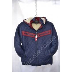 Мужская куртка(Зима) оптом MF-2299