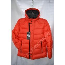 Мужская куртка(Зима) оптом MF-2310