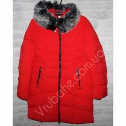 Куртка женская Зима батал (50-58) оптом -47394