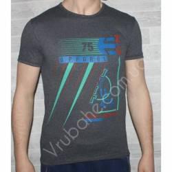 Футболка мужская BIG-LOWIS (M-XXL) Турция-48645