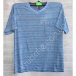 Футболка мужская (XL-3XL) Вьетнам -53029