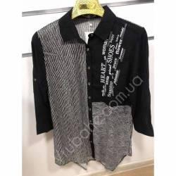 Рубашка женская Батал оптом(52-60)Украина-68903